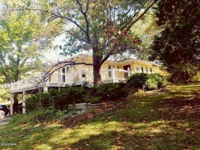 Creal Springs Single Family Home For Sale: 4017 Saraville Road
