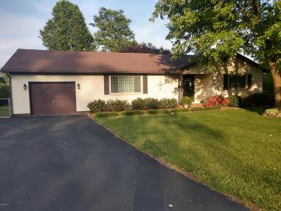 Massac County Single Family Home For Sale: 2102 Greenview Avenue