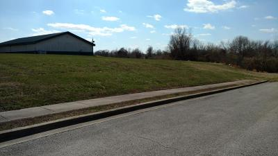 Jackson County Residential Lots & Land For Sale: Lots 5+6 S Giant City Rd.