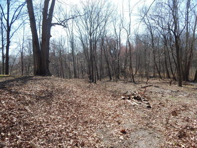 Goreville Residential Lots & Land For Sale: S Lake Shore Drive #1216