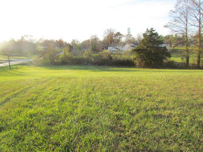 Carterville Residential Lots & Land For Sale: E Grand Avenue