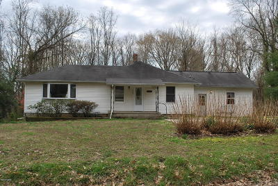 Murphysboro Single Family Home For Sale: 2443 Division Street