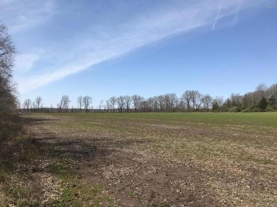 Carrier Mills Residential Lots & Land For Sale: Tuller Road