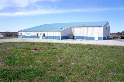 Massac County Commercial For Sale: 5357 Industrial Park Drive
