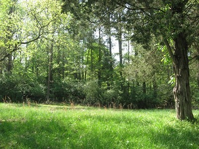 Carbondale Residential Lots & Land For Sale: Hawthorn Hollow