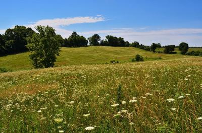 Johnson County Residential Lots & Land For Sale: Creal Springs Rd