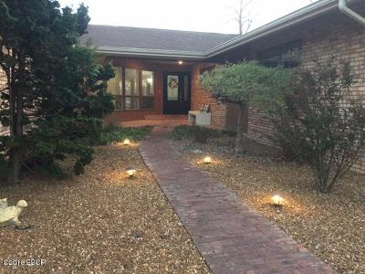 Marion Single Family Home For Sale: 415 Reichert Drive