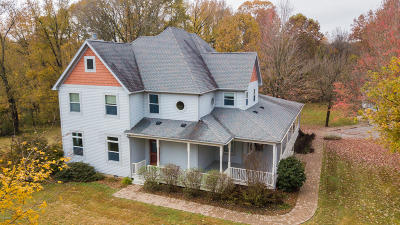 Cobden Single Family Home For Sale: 265 Eck Lane