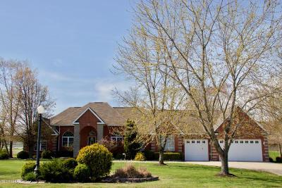 Williamson County Single Family Home For Sale: 1708 S Dallas Lane