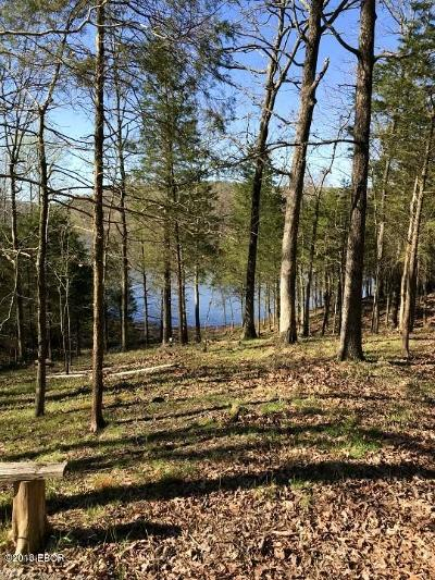 Goreville Residential Lots & Land For Sale: Parrish Ridge Lane #Lot 159