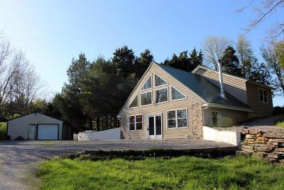 Goreville Single Family Home Active Contingent: 588 Toler Lane