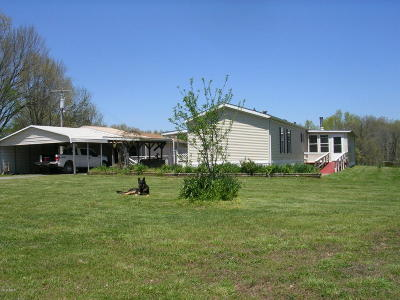 Pope County Single Family Home For Sale: 47 Wise Ridge Road