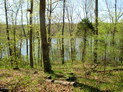 Goreville Residential Lots & Land For Sale: Raven Lane #Lot 33