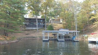 Goreville Single Family Home For Sale: 195 S Lakeshore Drive