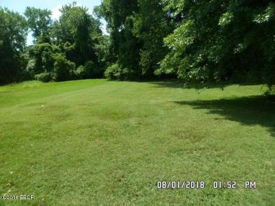 Carbondale Residential Lots & Land For Sale: 002 S Hanseman Street