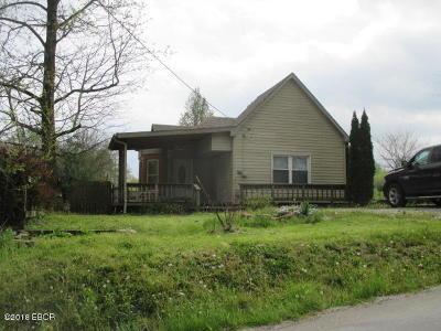 Cobden Single Family Home For Sale: 410 W Poplar Street