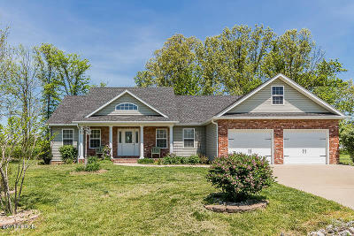 Carterville Single Family Home Active Contingent: 1736 Heritage Court