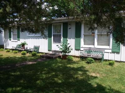Carbondale Single Family Home For Sale: 203 Freidline Drive