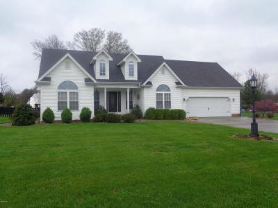Carterville Single Family Home Active Contingent: 107 Brooke Lane