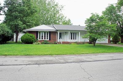 Massac County Single Family Home For Sale: 54 Hospital Drive