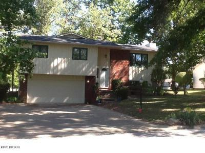 Herrin IL Single Family Home For Sale: $162,900