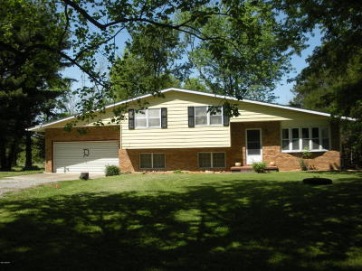 Carbondale Single Family Home For Sale: 897 Thunderstorm Road