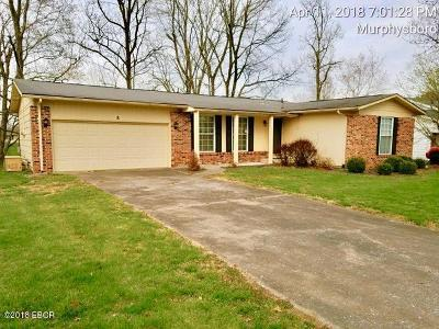 Murphysboro IL Single Family Home For Sale: $59,900