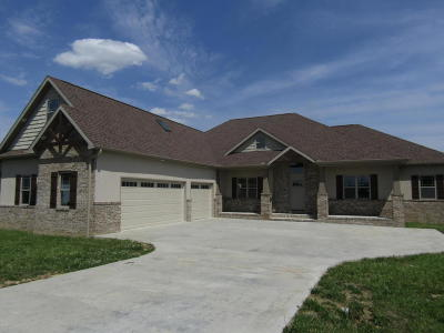Carterville Single Family Home For Sale: 1407 Paulie Road