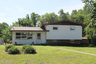Carbondale Single Family Home For Sale: 1401 Bobette Lane