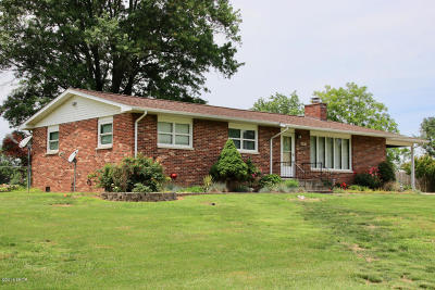 Murphysboro Single Family Home For Sale: 197 Brantley Road