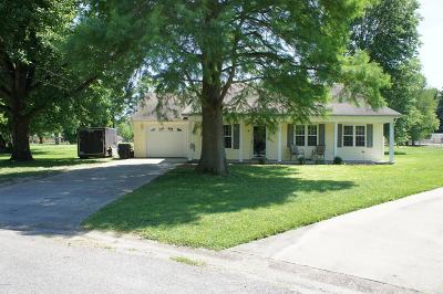 Massac County Single Family Home For Sale: 4 Hankins Circle