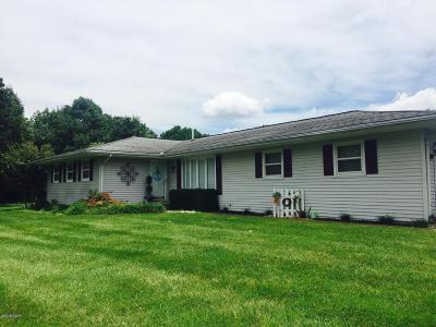 Goreville Single Family Home For Sale: 370 Friendship Loop