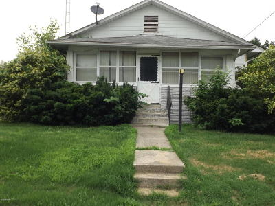 Johnston City Single Family Home For Sale: 406 W 5th Street