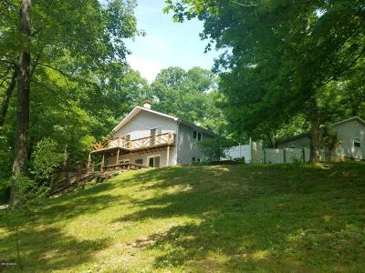 Goreville Single Family Home For Sale: 130 Remington Lane