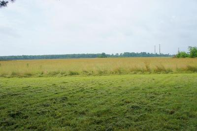Massac County Residential Lots & Land Active Contingent: 2028 Mt Pleasant Road