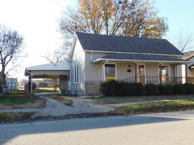 Herrin Single Family Home For Sale: 904 W Monroe Street