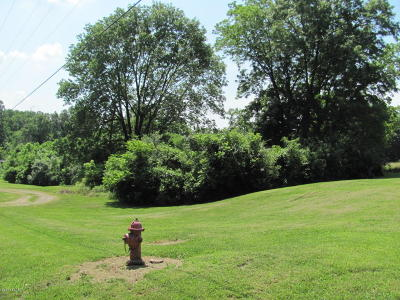 Carbondale Residential Lots & Land For Sale: 1255 E Park Street