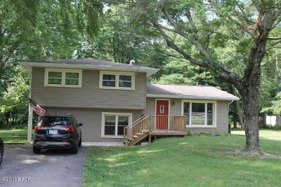 Williamson County Single Family Home For Sale: 316 Brenda Lane