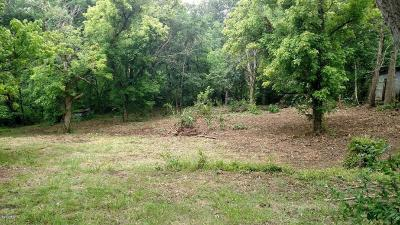 Carbondale Residential Lots & Land For Sale: 98 Indian Creek Road