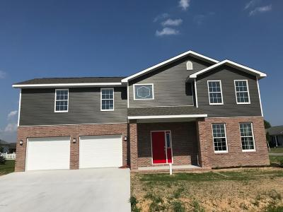 Herrin Single Family Home Active Contingent: 408 Prince Lane #36