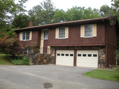 Carbondale Single Family Home For Sale: 6741 Old Highway 13