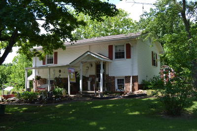 Goreville Single Family Home For Sale: 9452 Pulleys Mill Road Road