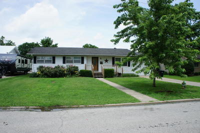 Massac County Single Family Home For Sale: 121 Carter Drive