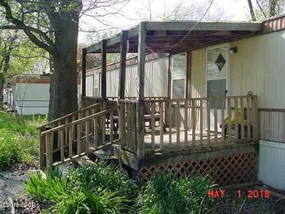 Murphysboro Single Family Home For Sale: 55 West Avenue Avenue