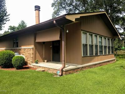 Carbondale Single Family Home Active Contingent: 28 E New Thompson Lake Road