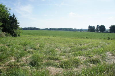 Massac County Residential Lots & Land For Sale: Country Club Road