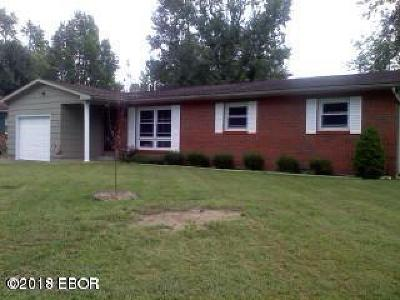 Marion Single Family Home For Sale: 205 Skyline Drive