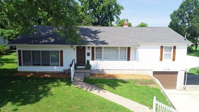 Carterville Single Family Home For Sale: 1113 S Division Street