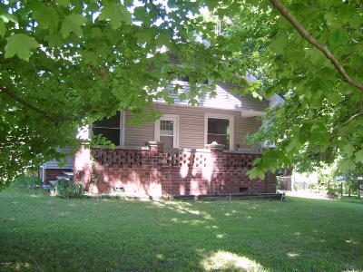 Murphysboro Single Family Home For Sale: 537 Illinois Ave Ext Extension