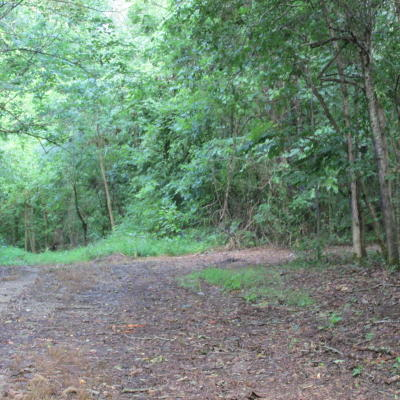 Residential Lots & Land For Sale: Hazel Road